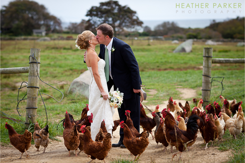 Martha's Vineyard wedding photographer Heather Parker at Allen Farm