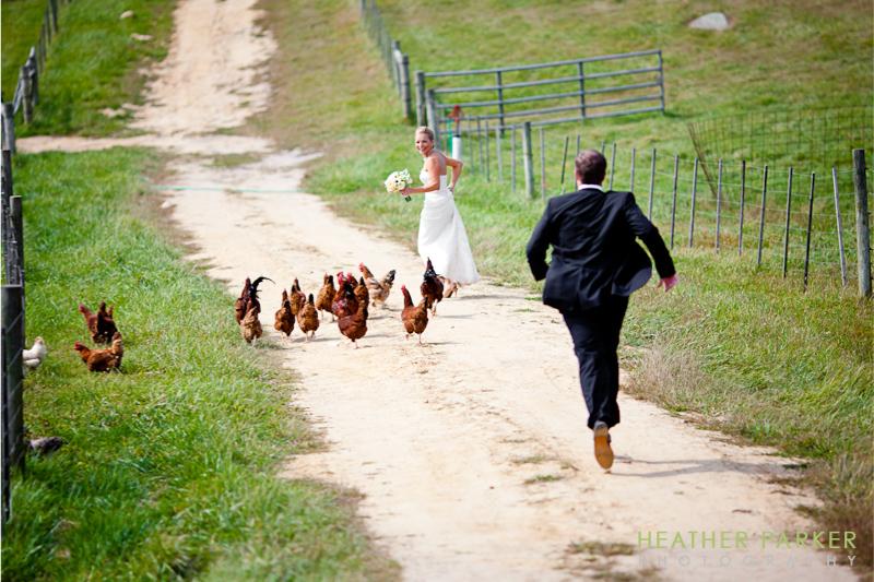 marthas vineyard allen farm wedding photographer
