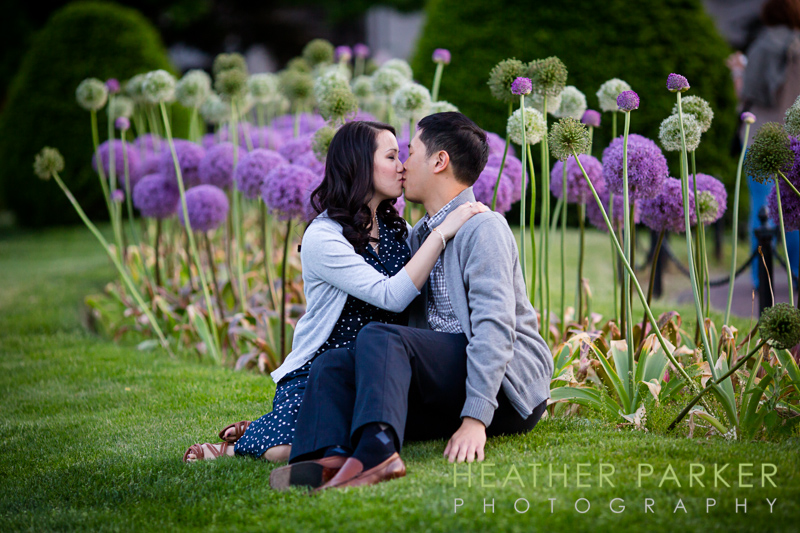 boston public garden engagement with purple flowers