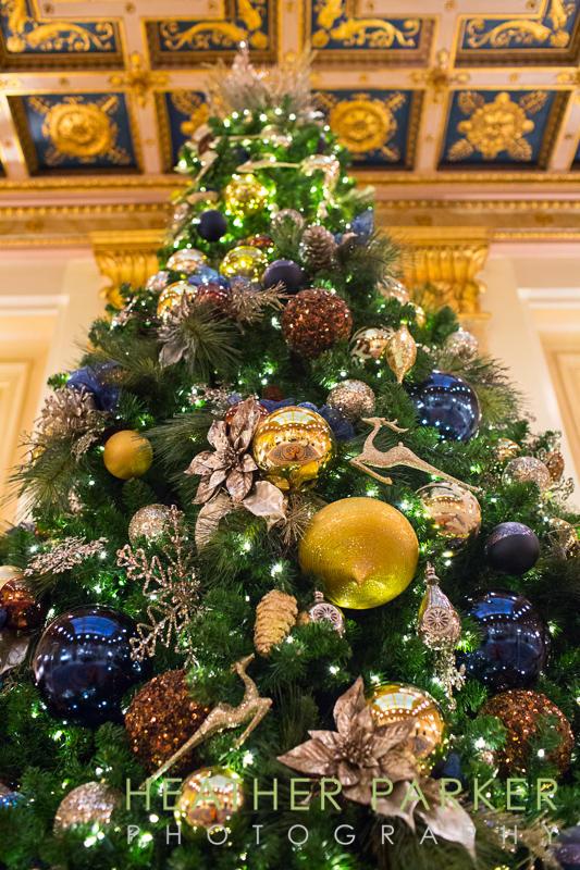 christmas tree in the Farmont Copley Plaza hotel lobby