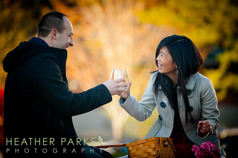 best engagement photo picnic ideas