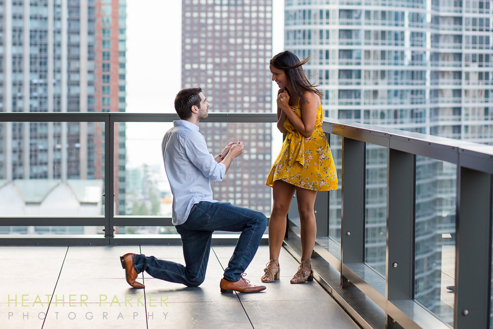 engagement proposal photographers Chicago