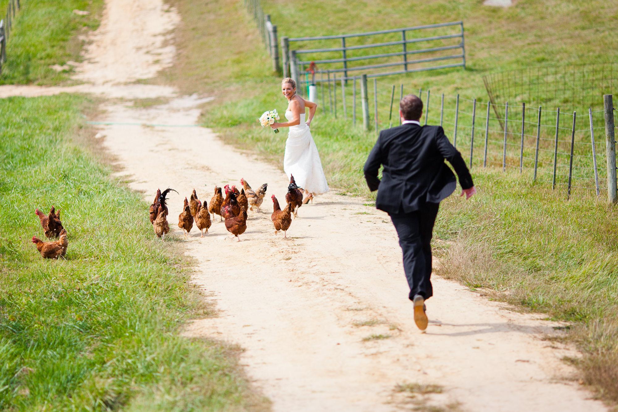 coronavirus wedding size limits